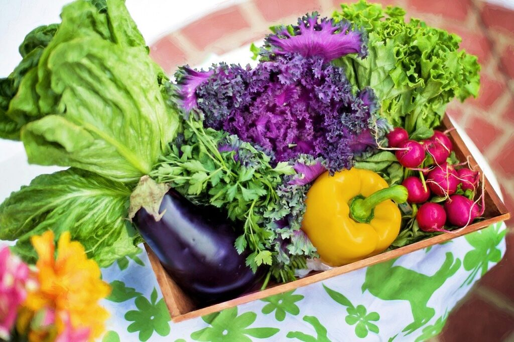 Mangiare sano: la verdura